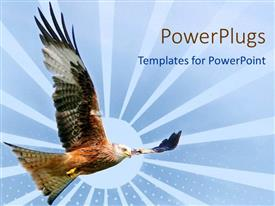 PowerPlugs: PowerPoint template with eagle flying with wide open wings design depiction of sun with large rays on blue background