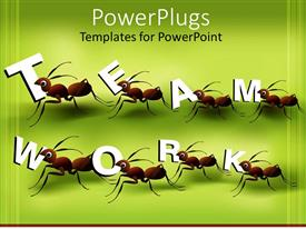 PowerPoint template displaying eight ants working in team to create word teamwork on green background
