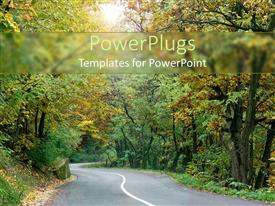 PowerPlugs: PowerPoint template with empty rural road curving through woodland forest