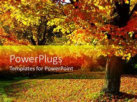 PowerPlugs: PowerPoint template with fall autumn landscape with trees and leaves on the ground