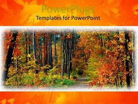 PowerPlugs: PowerPoint template with fall in forest path and colorful trees