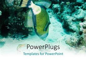 PowerPlugs: PowerPoint template with a fish in the water with a lot of coral reefs