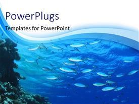 PowerPlugs: PowerPoint template with fishes swimming in blue water with blue waves in the background