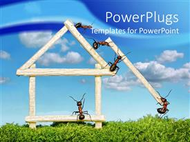 PowerPoint template displaying five ants working in team to build house of wooden matches on grass and blue sky in the background
