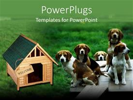 PowerPlugs: PowerPoint template with five dogs sitting in grass next to dog house with welcome sign