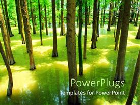 PowerPlugs: PowerPoint template with flooded forest with green trees with trees shadow in water