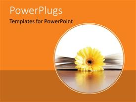 PowerPoint template displaying a flower with a book and orange background
