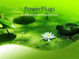 PowerPlugs: PowerPoint template with a flower with leaves and sand at the bottom of a river