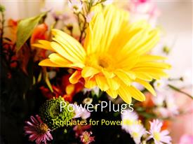 PowerPlugs: PowerPoint template with a flower with a number of flowers in background