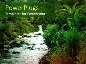 PowerPlugs: PowerPoint template with flowing stream with green natural vegetation