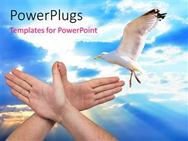 PowerPoint template displaying flying bird depicting peace and freedom with clouds