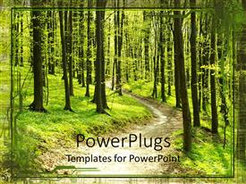 PowerPlugs: PowerPoint template with footpath in middle of green forest