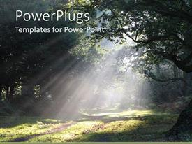 PowerPlugs: PowerPoint template with a forest during the day with a number of trees
