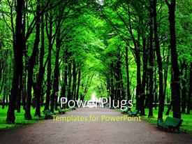 PowerPoint template displaying forest with huge green trees and benches