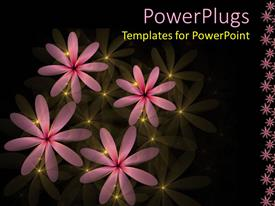PowerPlugs: PowerPoint template with four pink flowers with yellow lights on a black background