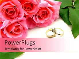 PowerPlugs: PowerPoint template with four pink roses and two wedding rings on a white background