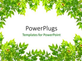 PowerPoint template displaying frame with green leaves