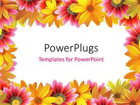 PowerPlugs: PowerPoint template with frame of yellow and pink color flowers with white color