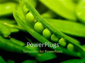 PowerPlugs: PowerPoint template with fresh flourishing green vegetables with green peas