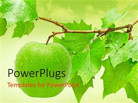 PowerPlugs: PowerPoint template with fresh green apple hanging from a tree with dew on it