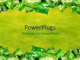 PowerPlugs: PowerPoint template with fresh green leaves with water drops on blurry background