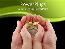 PowerPlugs: PowerPoint template with fresh plant in earth from baby's hand on man's hand