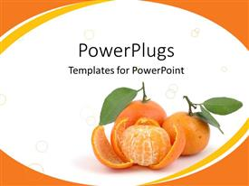PowerPoint template displaying some freshly plucked tangerines on a white colored background