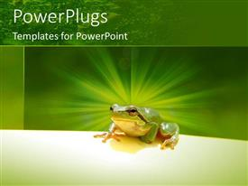 PowerPlugs: PowerPoint template with a frog with a greenish background and place for text