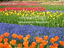 PowerPlugs: PowerPoint template with garden filled with flowers in bloom