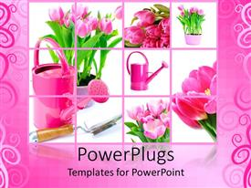 PowerPoint template displaying gardening related things with pinkish background