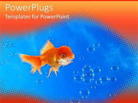 PowerPlugs: PowerPoint template with goldfish in blue water with water bubbles