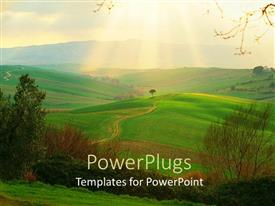 PowerPoint template displaying green fields of Campagna Toscana, Italy with sunlight rays in horizon
