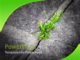 PowerPoint template displaying green grass growing in crack in stone, ecology, conservation