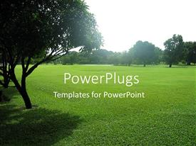 PowerPlugs: PowerPoint template with green grass and trees in the park in a sunny summer day