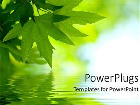 PowerPlugs: PowerPoint template with green maple leaves reflected on the water surface on green and light blue background