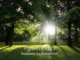 PowerPoint template displaying green trees and green grass forest view, park, with sun rays getting through the trees
