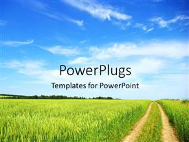 PowerPlugs: PowerPoint template with green vegetation with tire trails with blur cloudy sky