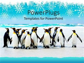 PowerPlugs: PowerPoint template with group of penguins on an icy background with falling snowflakes