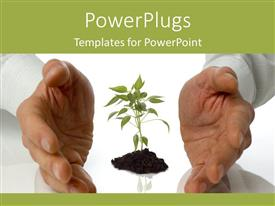 PowerPlugs: PowerPoint template with growing plants garden artificial life labs science environment sustainability