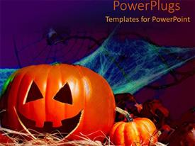 PowerPoint template displaying halloween decorations pumpkin bat spider webs spooky scary trick or treat