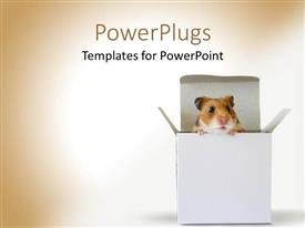 PowerPlugs: PowerPoint template with a hamster coming out of the box with glowing background