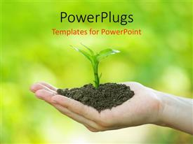 PowerPlugs: PowerPoint template with hand holding handful of soil with young seedling on out of focus greenery background