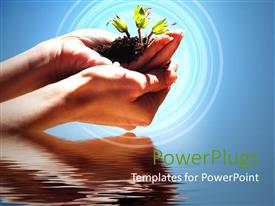 PowerPlugs: PowerPoint template with hands holding sprouting plant in soil just above water body