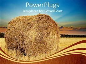 PowerPoint template displaying hay bale in field, blue sky