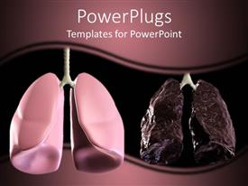 PowerPlugs: PowerPoint template with healthy and bad lungs displayed in shades of purple