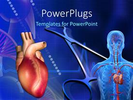 PowerPoint template displaying heart, cardiogram pulse and scan showing human circulatory system