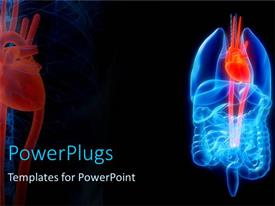 PowerPlugs: PowerPoint template with a highlighted blue and red human digestive and respiratory tract system