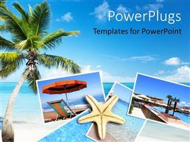 PowerPoint template displaying holiday destinations with palm trees  and beaches
