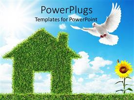 PowerPlugs: PowerPoint template with house made of green grass, sunflower, dove, blue sky, clouds, green living metaphor, sustainable, ecology