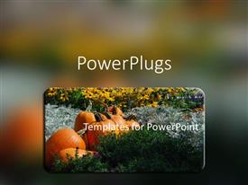 PowerPlugs: PowerPoint template with huge pumpkins in a pumpkin patch between colorful flowers in garden